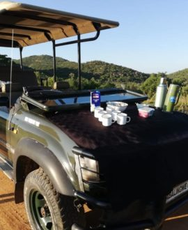 Game Drives/Viewing